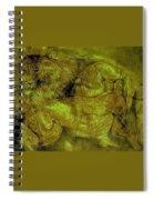 Lions-02 Spiral Notebook