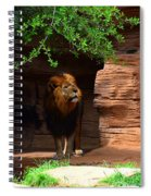 Lions And Tigers And...no Just A Lion Spiral Notebook