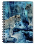 Lions Of The Mist Spiral Notebook