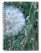 Lion's Tooth Spiral Notebook