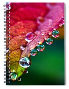 Liquid Beads Spiral Notebook