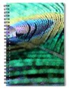 Liquid Color Spiral Notebook