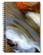 Liquid Gold Spiral Notebook