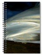 Liquid Silver Spiral Notebook