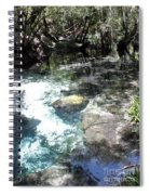 Lithia Springs Spiral Notebook