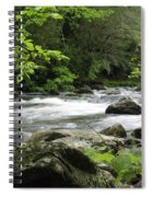 Litltle River 1 Spiral Notebook