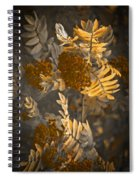 Litthe Creatuions Spiral Notebook