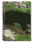 Little Bear Spiral Notebook