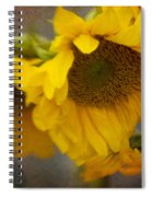 Little Bit Of Sunshine Spiral Notebook