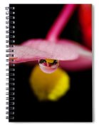 Little Blossom With Drop Spiral Notebook