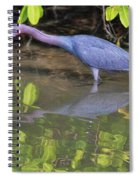 Little Blue Fishing Spiral Notebook