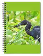 Little Blue Heron Catches A Frog Spiral Notebook