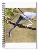 Little Blue Heron Going For Fish With Framing Spiral Notebook