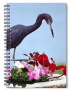 Little Blue Heron In Flower Pot Spiral Notebook