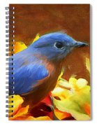 Little Boy Blue Spiral Notebook