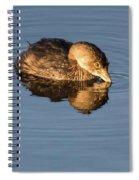 Little Brown Duck Spiral Notebook