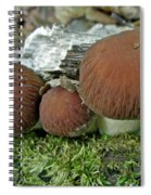 Little Brown Mushrooms In Moss Spiral Notebook