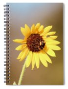 Little Bumble Bee Spiral Notebook