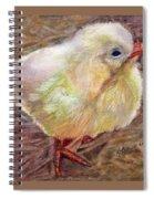Little Chick Spiral Notebook