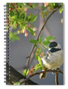 Little Chickadee In The Pink Spiral Notebook