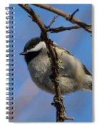 Little Chickadee Spiral Notebook