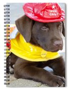 Little Chief Lab Pup Spiral Notebook