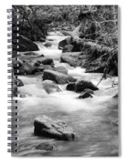 Little Creek 3 Bw Spiral Notebook