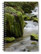 Little Creek 5 Spiral Notebook