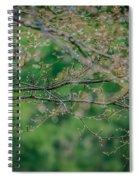 Little Diamonds In My Trees Spiral Notebook