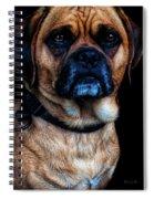 Little Dog Big Heart Spiral Notebook