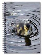 Little Duckling Goes For A Swim Spiral Notebook