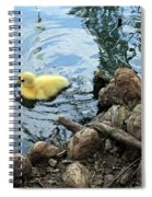 Little Ducky Spiral Notebook