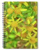 Little Grasshopper Spiral Notebook