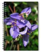Little Green Bee Spiral Notebook