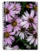 Little Green Bug Among The Flowers Spiral Notebook