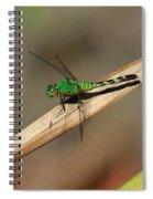 Little Green Friend Spiral Notebook