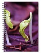 Little Green Sprouts  Spiral Notebook