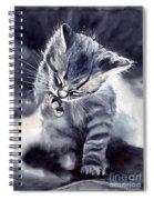 Little Grey Cat Spiral Notebook
