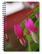 Little Hearts On A Vine  Spiral Notebook