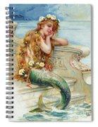 Little Mermaid Spiral Notebook