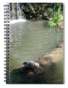 Little Otters At Jersey Zoo Spiral Notebook