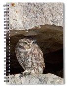 Little Owl Spiral Notebook