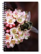 Little Pink Flowers Spiral Notebook
