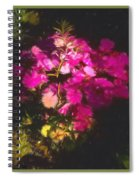 Little Pink Touches Spiral Notebook