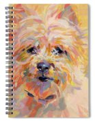 Little Ray Of Sunshine Spiral Notebook