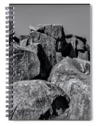 Little Round Top Gettysburg Spiral Notebook