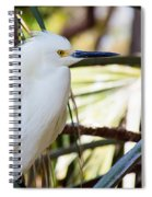 Little Snowy Egret Spiral Notebook