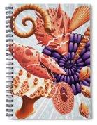 Little Treasures Spiral Notebook
