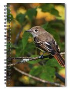 Little Tweet Spiral Notebook