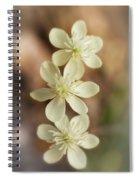 Little White Wildflowers  Spiral Notebook